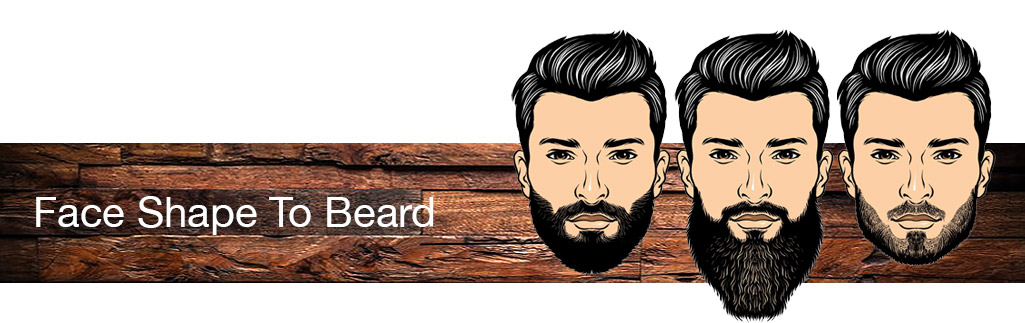 Education - Face Shape To Beard